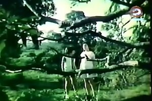Darna together with the Giants (1973)