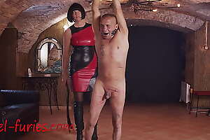 Hands up for Whipping